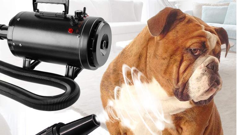 soffiatore per cani professionale