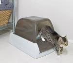 miglior lettiera autopulente per gatti