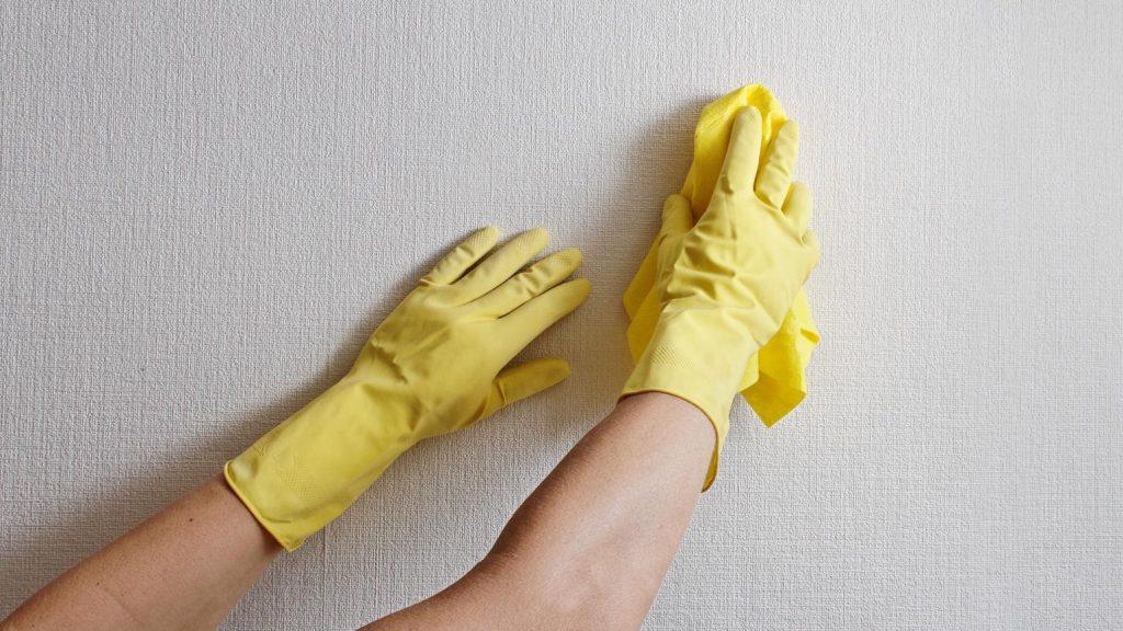 pittura lavabile per interni